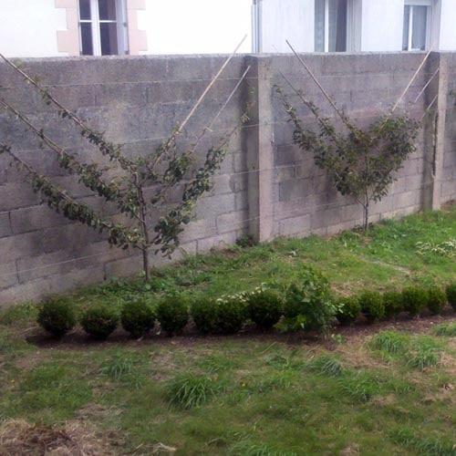 palmette oblique - Finistère - pays Bigouden